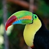 8-Day Costa Rica and Nicaragua Adventure Tour