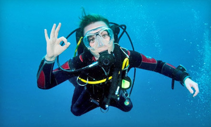 Deep Blue Scuba - Los Volcanes: Discover Scuba Class for One or Two or Open-Water Certification Course for One at Deep Blue Scuba (Up to 65% Off)