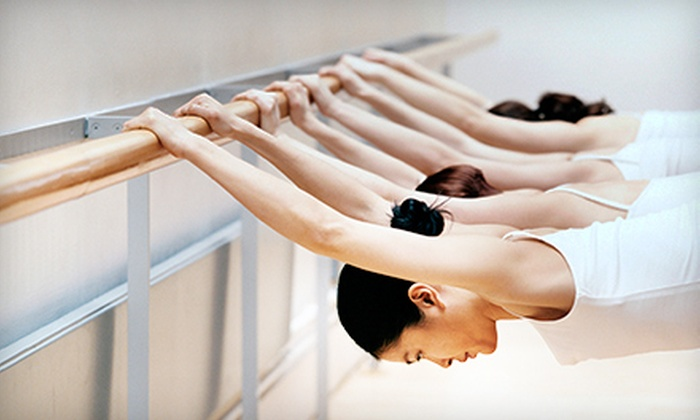 Set the Barre Fitness Studio - Rehoboth: 5 or 10 Drop-In Fitness Classes or Month of Unlimited Drop-In Fitness Classes at Set the Barre Fitness Studio (51% Off)