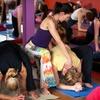 Half Off at West Hartford Yoga