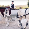 55% Off Winery Tour for 2 in Horse-Drawn Carriage