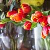 Two-Hour Floral-Arrangement Class