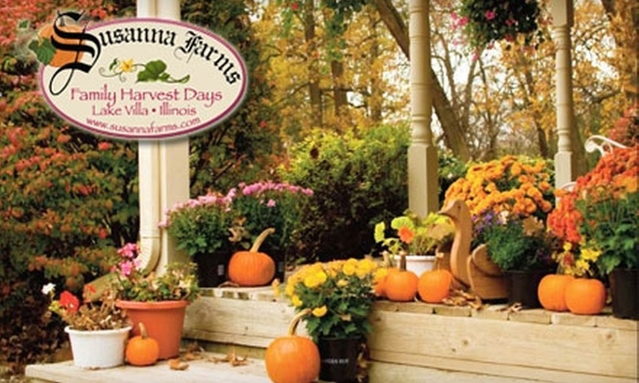 Susanna Farms - Lake Villa: $10 for One Admission to a Corn Maze and Hayride Plus a Large Pumpkin and Large Mum at Susanna Farms ($20 Value)
