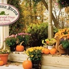 $10 for Corn Maze, Hayride, and More