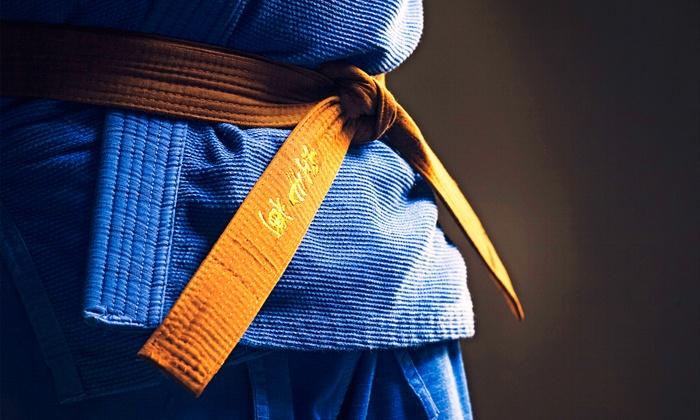Team Flo Brazilian Jiu-Jitsu-Lowell - South Lowell: $25 for $50 Worth of Services at Team Flo Brazilian Jiu Jitsu