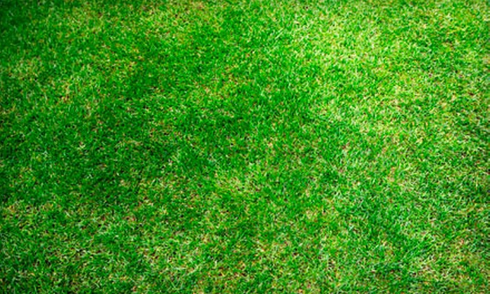Hinshaw Turf & Tree - Asheville: $80 for Lawn Aeration and Organic Fertilization from Hinshaw Turf & Tree (Up to $220 Value)