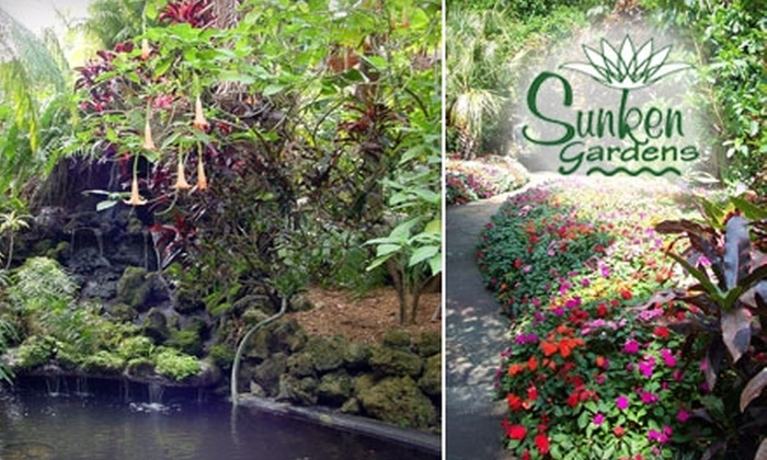 Half Off At Sunken Gardens Sunken Gardens Us Groupon