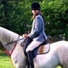 Half Off Horseback-Riding Lesson or Party