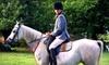 Labzara Ranch - Vandever Acres: One-Hour Private Horseback-Riding Lesson or Horseback-Riding Birthday Party at Labzara Ranch
