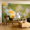 $49 for $150 Toward Murals