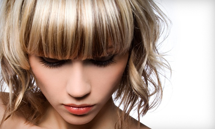 Tridosha - Downtown Lee's Summit: Haircut with Aveda Glossing Treatment, Partial Highlights, or Full Color at Tridosha in Lee's Summit (Up to 58% Off)