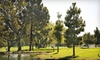 Sky West Golf Course (Hayward Area Recreation and Park District) - Hayward: $72 for a Golf Outing for Two at Skywest Golf Course in Hayward (Up to $142.98 Value)