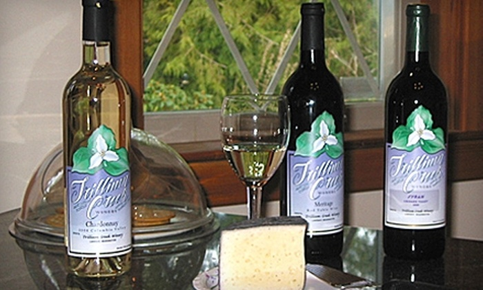 Trillium Creek Winery - Lower Peninsula: $10 for Bottle of Syrah or Merlot at Trillium Creek Winery in Home ($20 Value)