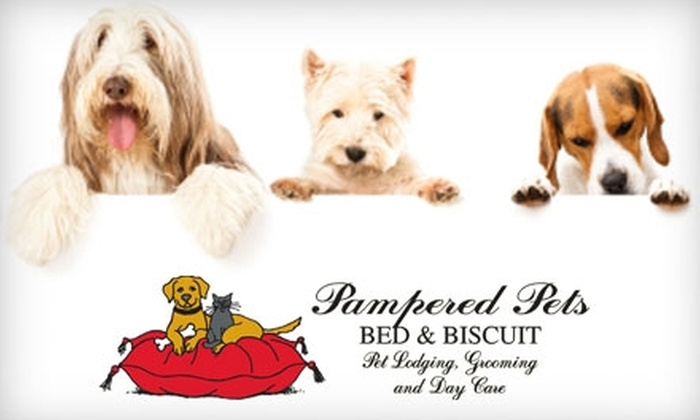 Pampered Pets Bed & Biscuit - Fort Wayne: $8 for One Full Day of Doggie Day Care at Pampered Pets Bed & Biscuit ($18 Value)