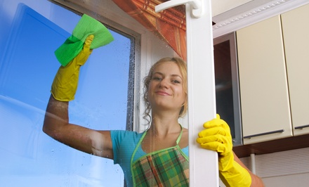 Window Washing for the Interior, Exterior, or Both from Nature's Way (Up to 71% Off)