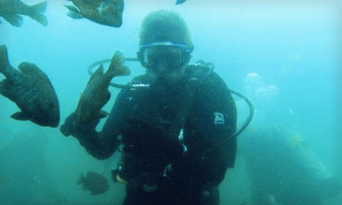 Scuba Divers Market & Expo - Pasadena: Expo Day for Two, Four, or Six at Bay Area Divers' Scuba Divers Market & Expo in Seabrook on October 8