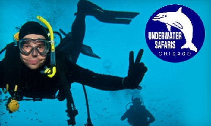 Underwater Safaris Scuba Center - Lakeview: $25 for a 1.5-Hour Discover Scuba Class at Underwater Safaris ($50 Value)