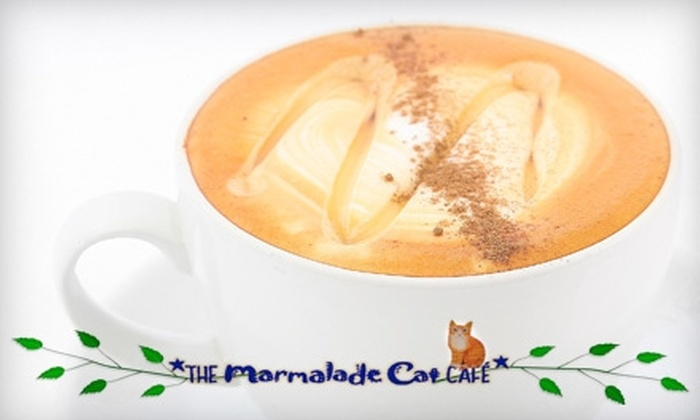 The Marmalade Cat Café - South Pandosy - K.L.O.: $5 for $10 Worth of Coffee Drinks, Homemade Baked Goods, and More at The Marmalade Cat Cafe