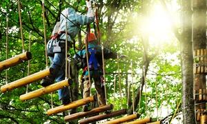 Kletterwald Lützen: 6 Stunden Klettern im Kletterwald Lützen (bis zu 62% sparen*)