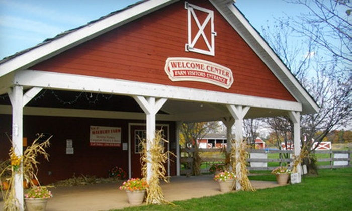 Maybury Farm - Northville: Farm Play Day and Snacks for Five with Glow Sticks or a Hayride at Maybury Farm in Northville