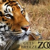 Half Off Admission to Gulf Breeze Zoo