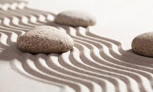 Meditation Workshop: Find Inner Calm with a Mindfulness Meditation Instructor