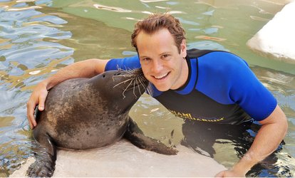 Up to 47% Off Dolphin, Seal & Reef Interactions at Miami Seaquarium