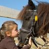 54%Up to 61% Off Horseback Riding