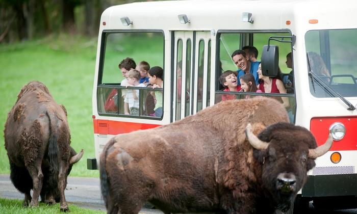 Northwest Trek Wildlife Park - Northwest Trek Wildlife Park: Weekday or Weekend Admission for One Adult or One Youth to Northwest Trek Wildlife Park (Up to 25% Off)