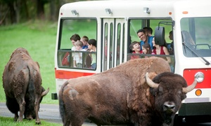 Northwest Trek Wildlife Park: Weekday or Weekend Admission for One Adult or One Youth to Northwest Trek Wildlife Park (Up to 25% Off)