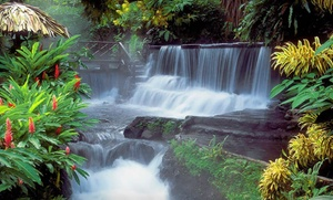Costa Rican Spa Vacation