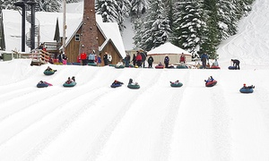 Mt. Hood Skibowl: Two Groupons, Each Good for One Ticket for Daytime or Cosmic Snow Tubing at Mt. Hood Skibowl (50% Off)