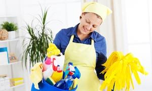 Verdant: 4 ore di pulizia ordinaria e 1 o 2 ore di pulizia straordinaria da Verdant (sconto fino a 79%)