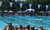 Spokane Area Swimming - West Central: $75 for $150 Worth of summer swim league at Spokane Area Swimming