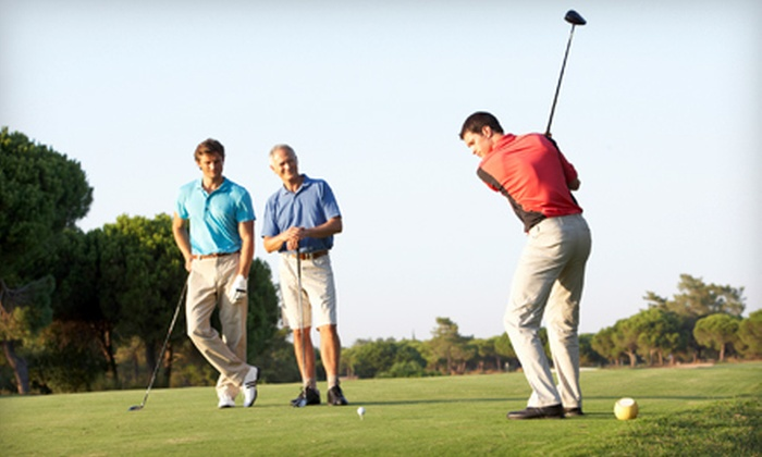 The Triangle Junior Golf School - Cary: Swing, Playing, and Short-Game Lessons at The Triangle Junior Golf School (Up to 79% Off). Three Options Available.
