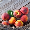 48% Admission to Off Peach Festival
