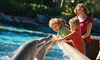 Up to 50% Off at SeaWorld San Diego and Aquatica San Diego