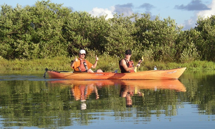Ripple Effect Ecotours - Marineland: Four-Hour Single or Tandem-Kayak Rental from Ripple Effect Ecotours (Up to 47% Off)