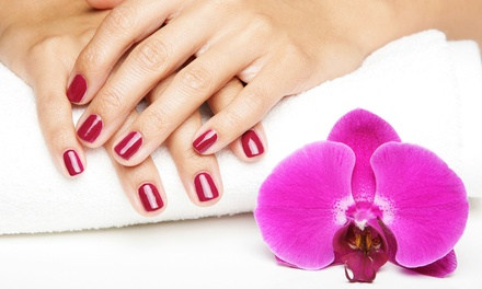 Shellac Manicure with Optional Spa Pedicure at Radha's Day Spaz @ Gentle Touch Salon & Spa (Up to 54% Off)