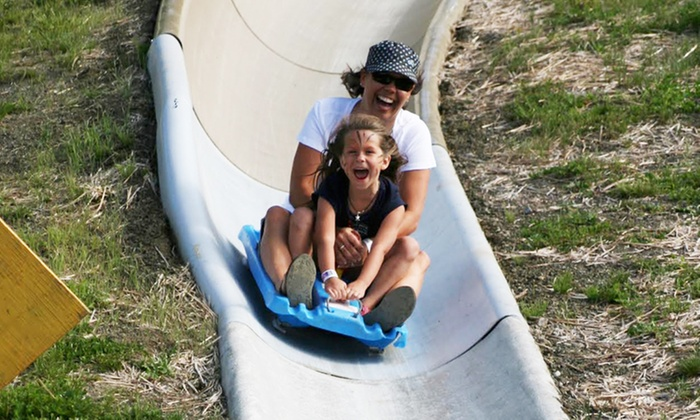Mt. Hood Adventure Park at Skibowl - Mount Hood: Two Person or Four Person Groupons, Each Good for Two Alpine-Slide Rides at Mt. Hood Adventure Park (43% Off)