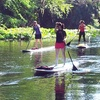Up to 54% Off Paddleboarding Lesson or Tour