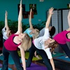 Up to 70% Off Yoga Classes at The Zen Zone