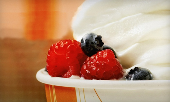 Orange Leaf Frozen Yogurt - Kingwood: $5 for $10 Worth of Self-Serve Frozen Yogurt at Orange Leaf