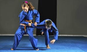 Associazione Sportiva Dilettantistica New Freedom: 10 o 20 lezioni di wing tsun, woman training o kung fu (sconto fino a 88%)