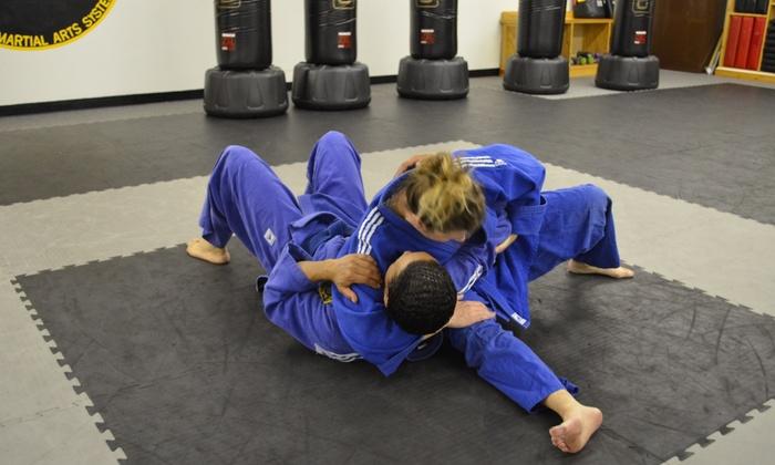 Rodney Cheeseman Karate & Mma Studio - Farmington: Four Weeks of Unlimited Martial Arts Classes at Rodney Cheeseman Karate (52% Off)