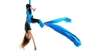 The Aerial Classroom: Two-Hour Adult or One-Hour Youth Circus Aerial Training at The Aerial Classroom (Up to 57% Off)