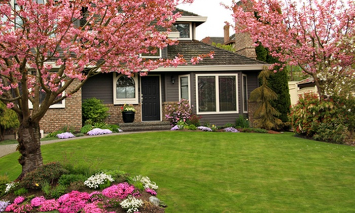 Greensleeves Belfast - Belfast: Lawn Treatment and Weed Control from £9 with Greensleeves (Up to 55% Off)