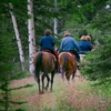 Up to 51% Off Guided Trail Ride for 2 or 4