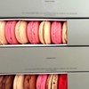 Box of macaroons or London cake