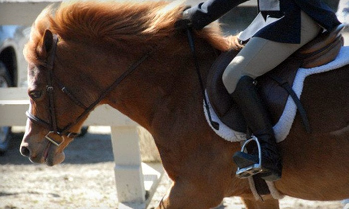 California Riding Academy - San Mateo: One or Three Private Horse-Riding Lessons at California Riding Academy in Menlo Park (Up to 54% Off)